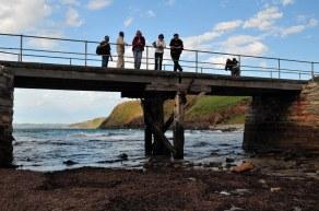 The bridge - Ray