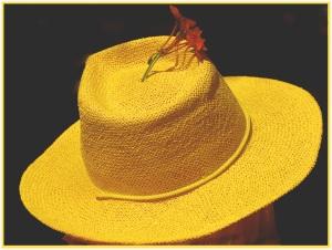 Hello Yellow - Ursula Prucha (set)