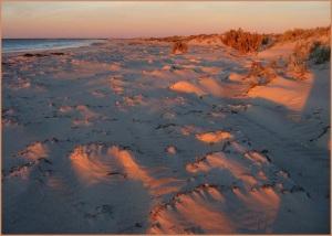 Heather Connolly - sun and sand (EC)