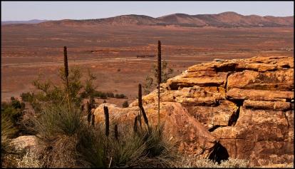 Flinders Panorama - Adrian Hill