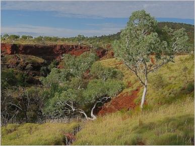 Pilbara Landscape - Heather Connolly