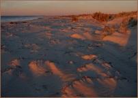 Sun and Sand - Heather Connolly