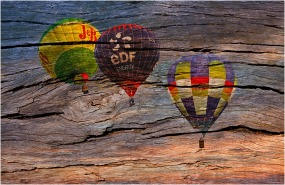 Balloons in Wood - John Vidgeon