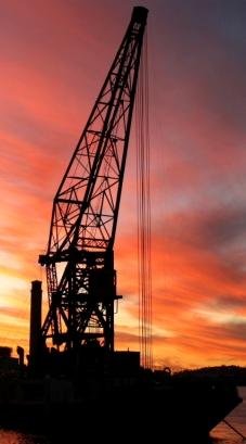 Crane at sunset - Melinda Hine
