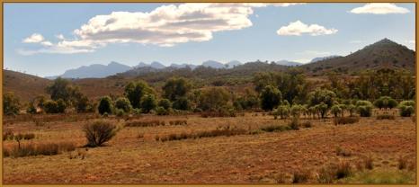 Outback Flinders Ranges - Theo Prucha