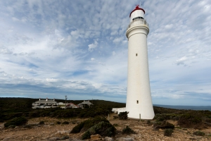 Merit - Jo Tabe_Portland Lighthouse