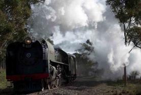 Graham Field - Train