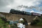 Ron Hassan - Steam train
