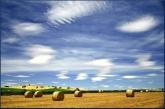 Helen Whitford_Harvest Sky_Landscape