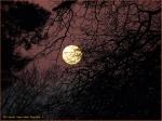 [02] James Allan – MoonRise