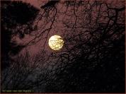 [02] James Allan - Moon Rise