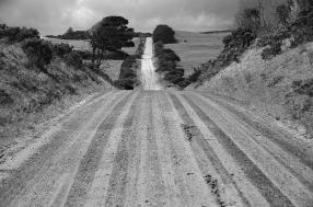 James Allan - Road to Bridgewater Lakes - Mono