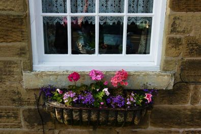 James Allan_Window Box