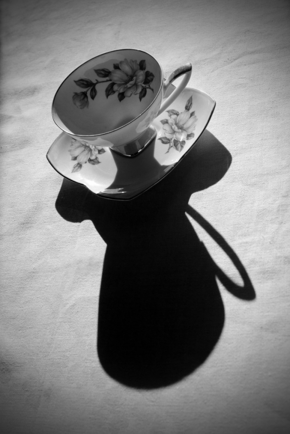 Jennifer Williams - Olive's Teacup Shadows