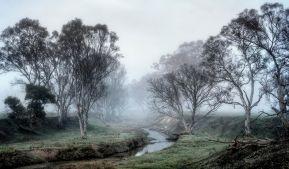 Alberto Giurelli - Wintery Outback