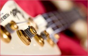 Ashley Hoff - Precision Bass - Set