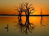 C03_Alberto Giurelli_Bonney Sunset_open
