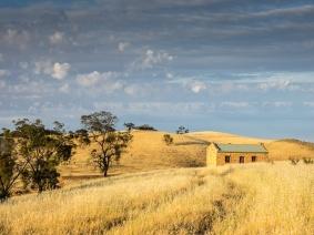 Nestled Farmhouse - Judy Sara