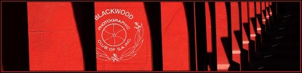 Red Pillar Banner-s