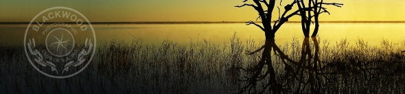Lake Bonney Banner