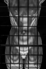 Caged Contours - Chris Schultz