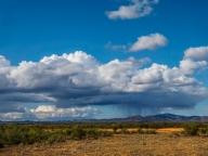 There's Rain in those Hills - Judy Sara