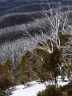 Alpine Slopes - Bruce Nankivell