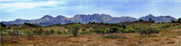 Bunyeroo Valley Panorama - Helen Whitford