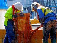 Workmen, Sydney Harbour - Jenny Pedlar