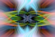 Eastern Rosella Twirled - Kerry Malec