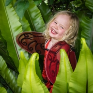 Ladybird Elle - Judy Sara