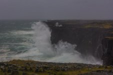 17. Duart McLean _ Resilient Cliffs