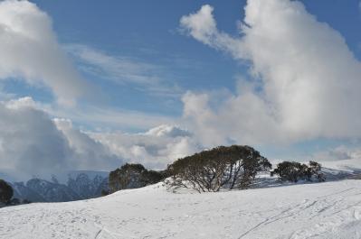 19. Ray Goulter_Phantom Skier