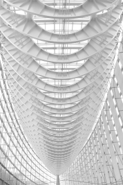Tokyo Roof Skeleton - Don McLeod
