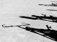 Wildebeest Bikes - Judy Sara