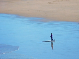Looking for a Wave - Jenny Pedlar