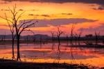 Argyle Sunset – GordonLindqvist
