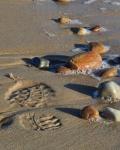Leave Nothing but Footprints – MeredithRetallack