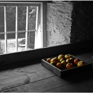 Heligan Apples - Mark Pedlar