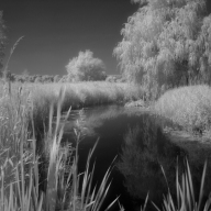 Paul Hughes - Infra Red Bintree Mill