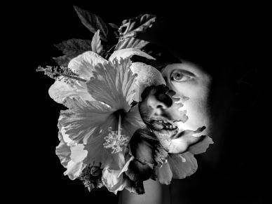 Vicki Kramer - Floral Tribute