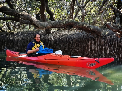 James Allan_In the Mangroves