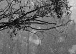 Duart McLean_Its Raining