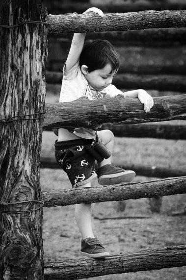 James Allan_Climbing Boy