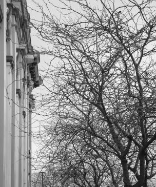 Sheila Gatehouse - Bleak and Bare in Winter