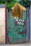 Jenny Pedlar – Beware of theDog