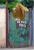 Jenny Pedlar - Beware of the Dog