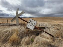 James Allan - Landscape
